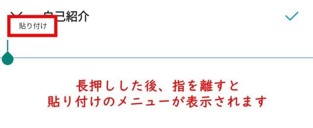 インスタ自己紹介編集(長押し~貼り付け)