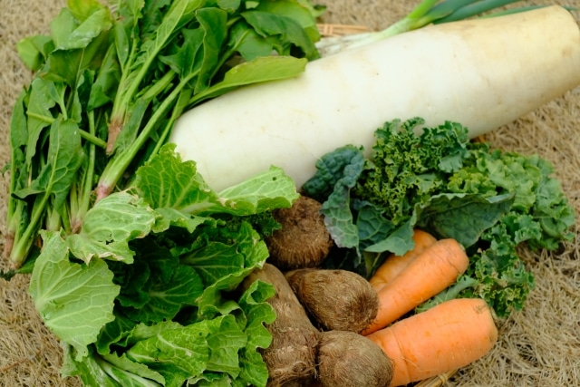 大根や人参、ほうれん草などの野菜