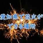 愛知県で花火ができる場所